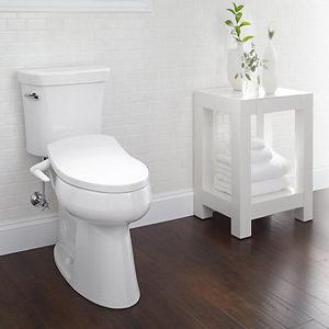 Toilet Bidet & Hose